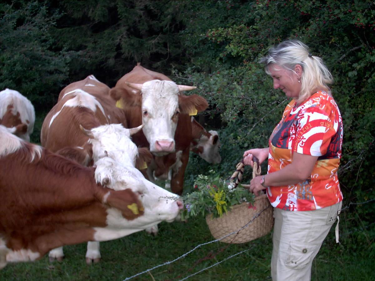 Die Gartenbäuerin - Gisela Hafemeyer
