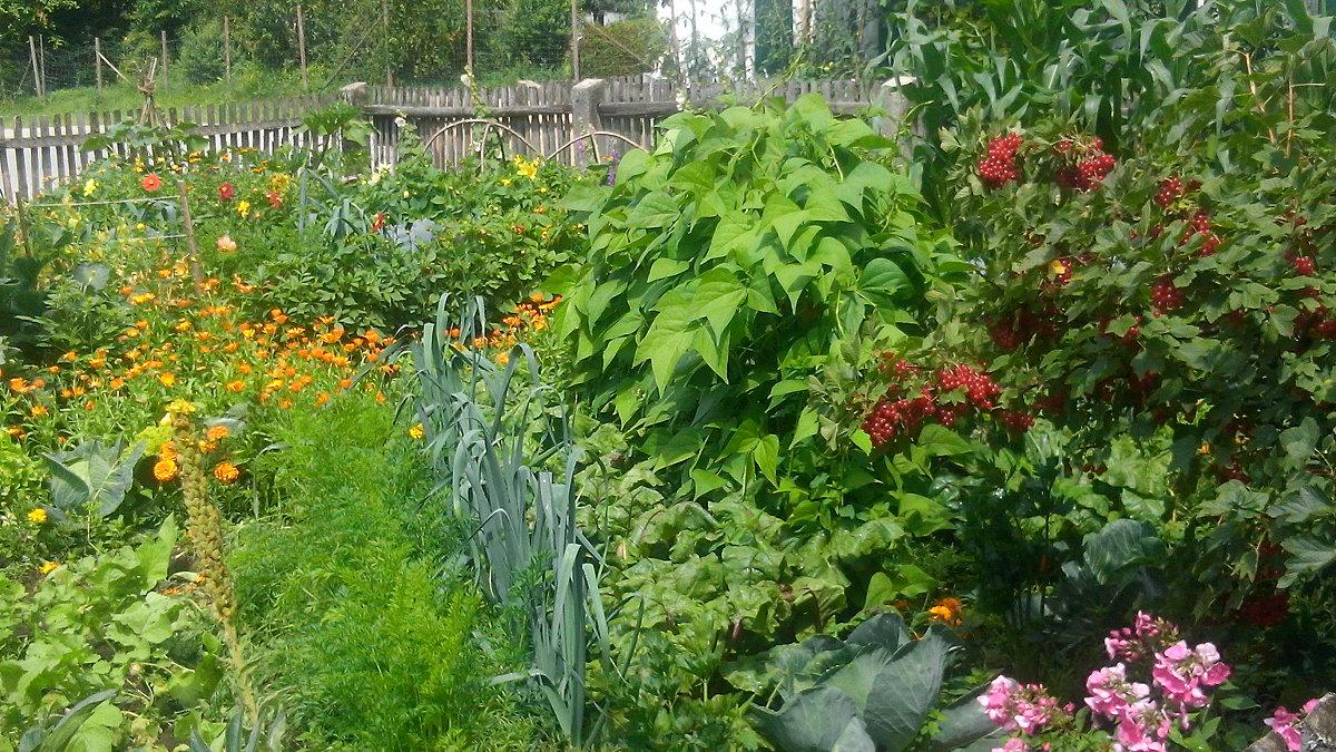Gartenbäuerinnen & Kräuterpädgogen im Oberland